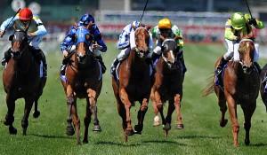 Horse Racing Multi